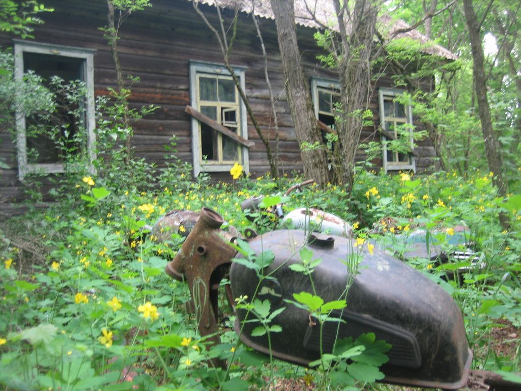 туризм чернобыльская зона3.jpg