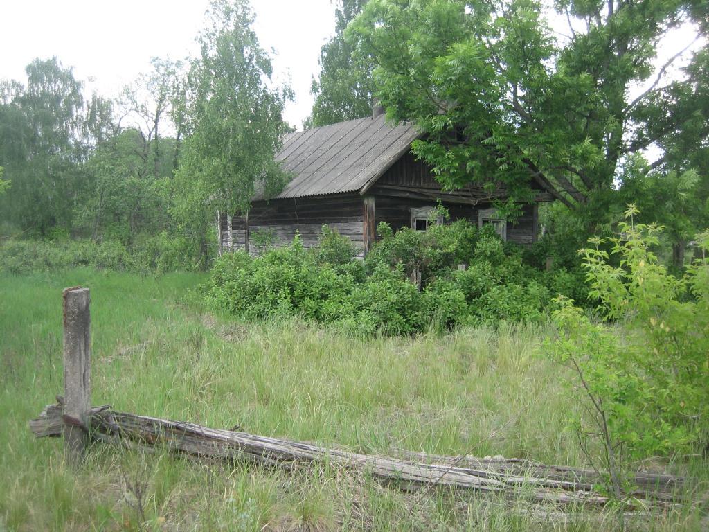 туризм чернобыльская зона4.jpg